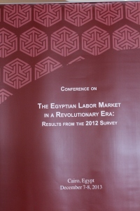 The Egyptian Labor Market Panel Survey